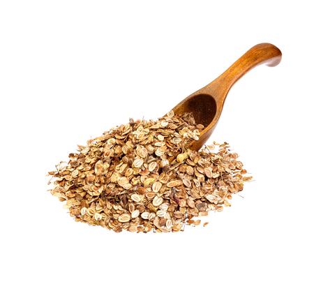parsnip: Parsnip seeds on the wooden spoon. Stock Photo