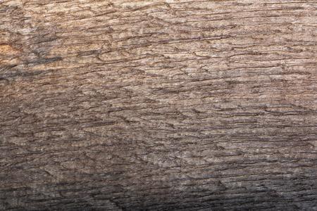 bog: Bog oak.