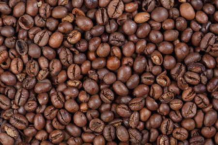 robusta: Texture of Togo Robusta (gourmet coffee).
