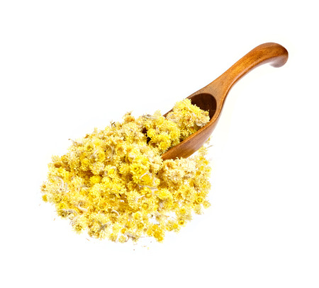 Helichrysum flowers on the wooden spoon. Isolated on white.