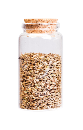 fennel seeds: Dried fennel seeds in a bottle with cork   for medical use.