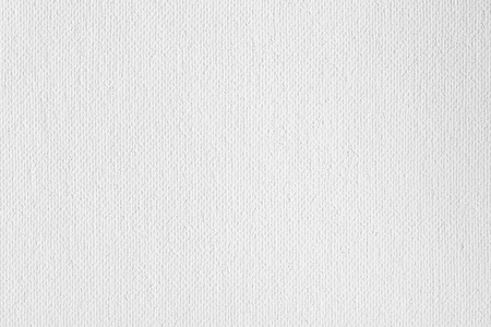 White canvas texture or background.