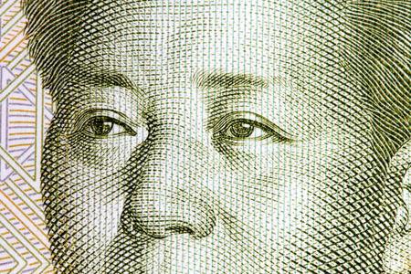 the chairman: Eyes of the chairman Mao fron one yuan banknote.