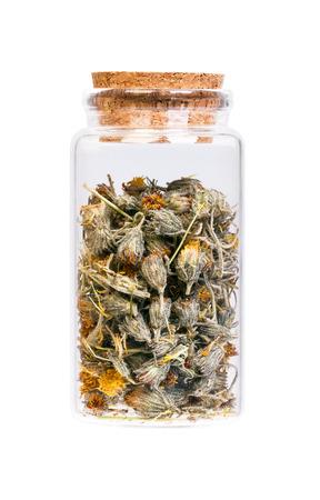 hieracium: Dried Hawkweed flowers Stock Photo