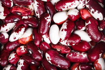 anasazi: Anasazi beans as background. Close-up shot.