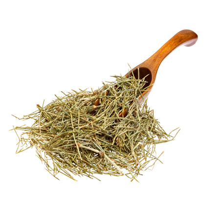 horsetail: Dried Field Horsetail on the wooden spoon. Stock Photo