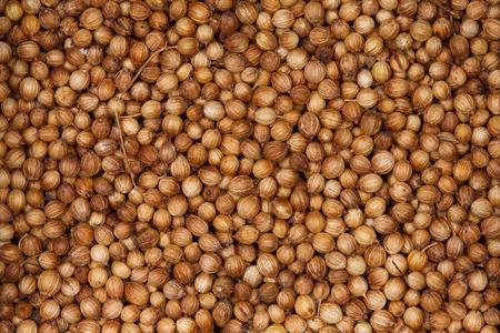 cilantro: Semillas de cilantro.