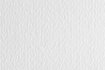 Fondo del Libro Bianco, struttura approssimativa della cancelleria del modello. Archivio Fotografico