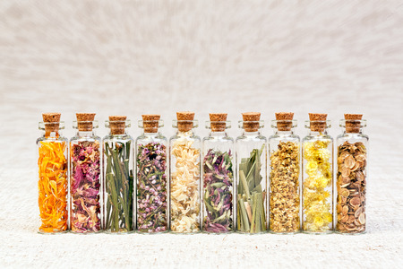 Herbs for homeopathic use.