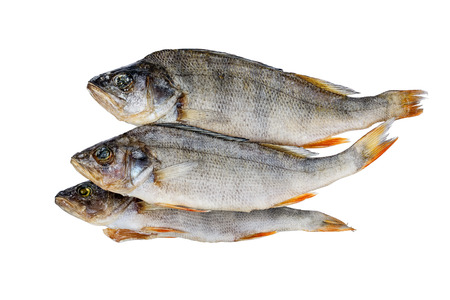 silver perch: Dried fish. Perch.