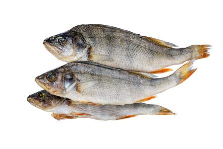 perch dried: Dried fish. Perch.