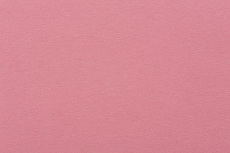 amaranthine: Purple paper texture. Background. High quality texture in extremely high resolution