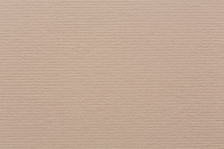 subtle background: Light beige canvas texture with vignette, subtle background. High quality texture in extremely high resolution