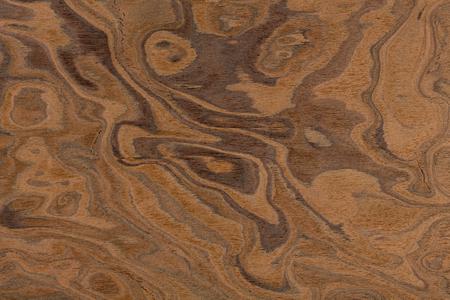 walnut burl: Californian walnut burl design texture. Natural background closeup. Extremely high resolution photo. Stock Photo