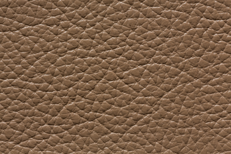 Elegant brown leather texture with contrast surface. High resolution photo. 免版税图像