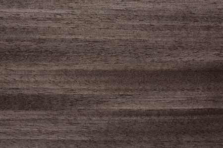 Clear-cut wooden veneer texture in superior grey tone. High resolution photo.