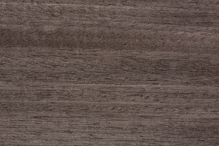 Exquisite wooden veneer texture in ideal grey colour. High resolution photo.