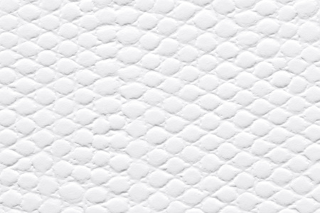 White patterned paper background as part of your interior.