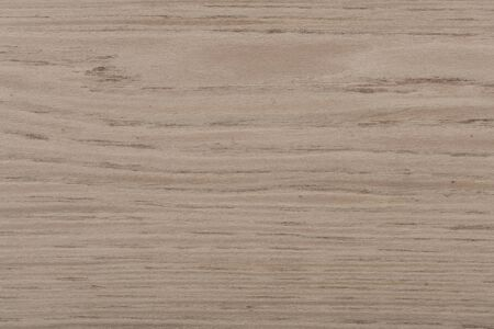 Beautiful light grey oak veneer background as part of your home
