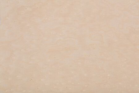 Elegant maple veneer background in natural light color. High qua