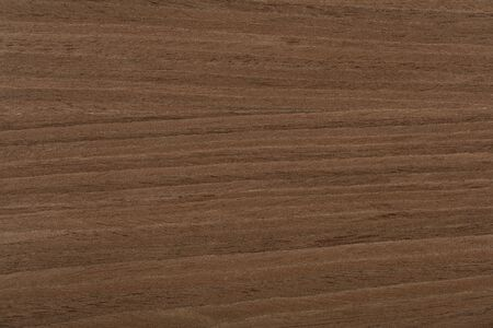 New expensive nut veneer background in universal brown color. Hi