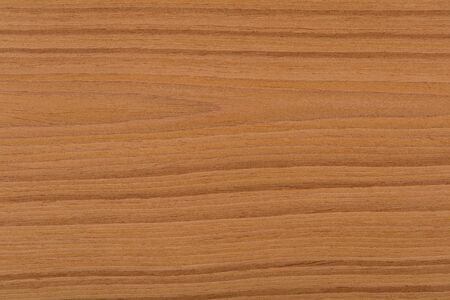 New expensive brown oak veneer background. High quality texture