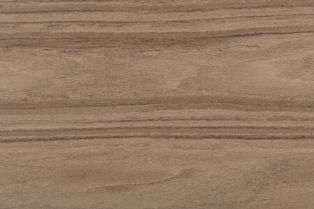 Beautiful natural nut veneer background in awesome grey color. High quality texture in extremely high resolution. 50 megapixels photo. Reklamní fotografie