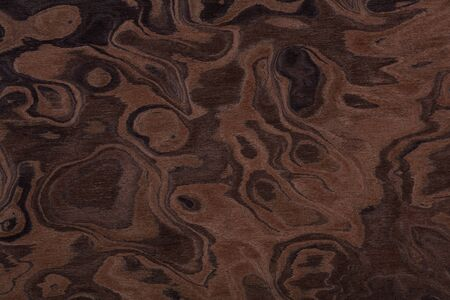 Contrast brown nut veneer background for your elegant design. High quality texture in extremely high resolution. 50 megapixels photo. Stock fotó