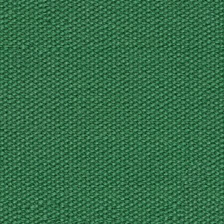 Excellent green tissue background for new stylish design.