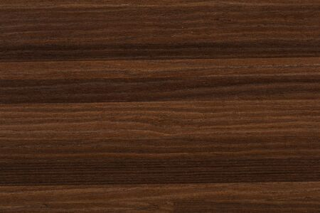 New beautiful veneer background in brown color. High quality texture in extremely high resolution.