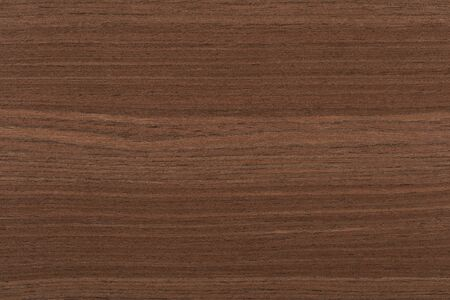 Perfect new oak veneer background as part of stylish design.
