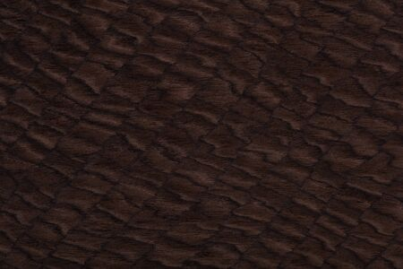 Expensive designer veneer background with unique brown surface.