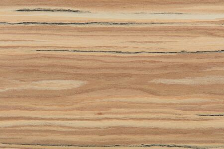 New natural olive veneer background for your unique design view. High quality wood texture.