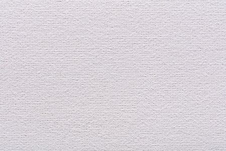 Coton canvas texture in elegant white color for your creative work.