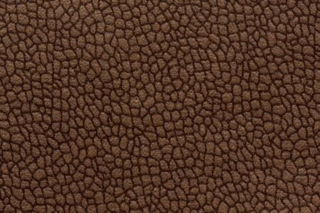 Elegant ornamental fabric texture in chocolate tone.
