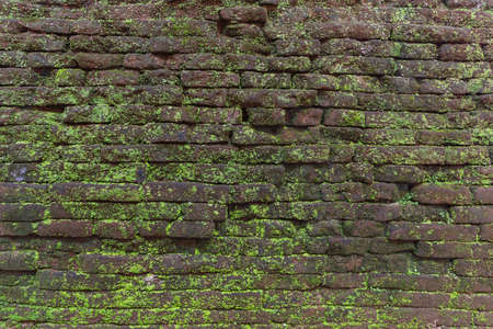 Attractive stone wall background, vintage texture with green moss. Imagens