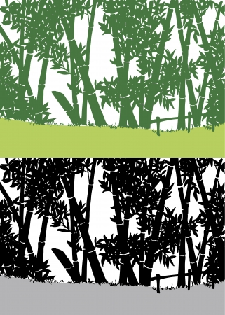 Silhouette of bamboo in Asia Stock Vector - 15062581
