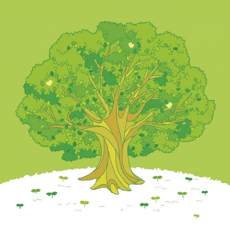 Illustration of the tree on the hill