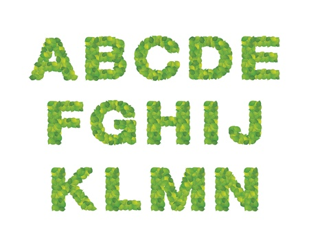 Alphabet made from leaf Vector