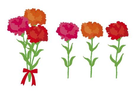 Carnation został narysowany kredką Ilustracja