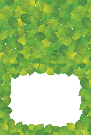 Square frame and background made ​​from leaves Illustration