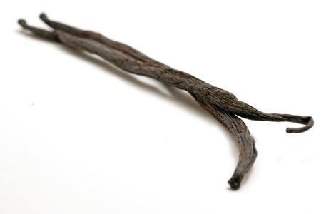 vanilla sticks on white