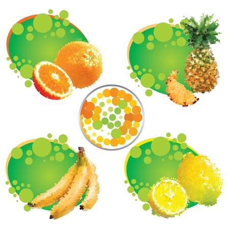 tropical fruit  Illustration