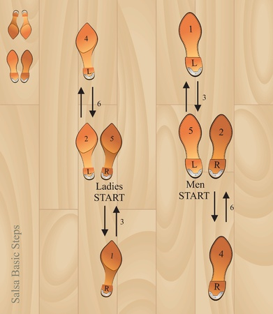 bailar salsa: pasos básicos de salsa vectoriales eps