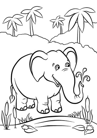 Cute elephant standing and playing with water in the jungle photo