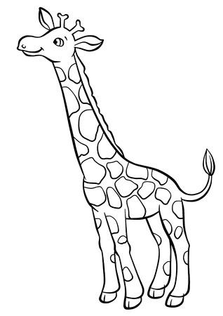 Leuke giraf die bladeren van de boom Stockfoto