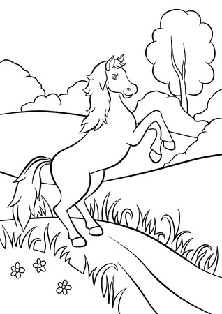 畑の道の上に美しい馬立って