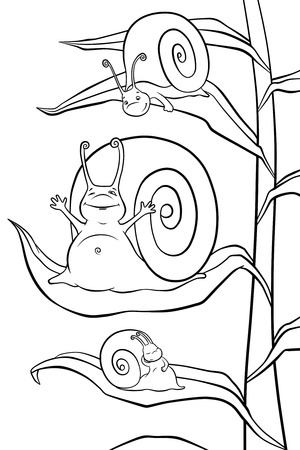 sleepiness: three little snails in the morning on the plant Stock Photo