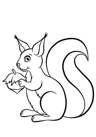 Little cute squirrel with huzelnut sitting photo