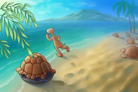 some turtle going to swim photo
